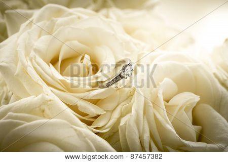 Beautiful Engagement Ring With Diamond Lying On White Rose