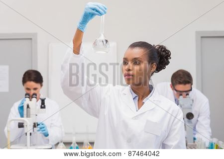 Scientist looking at white precipitate while colleagues working in the laboratory