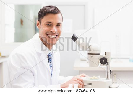Smiling scientist observing petri dish with microscope in laboratory