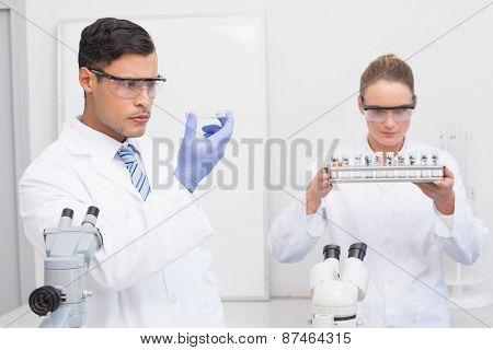 Scientists looking at petri dish and tubes in the laboratory