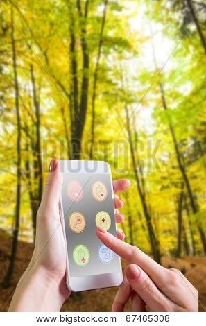 Hand holding smartphone against trees in the autumnal forest