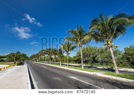 Caribbean Street Road