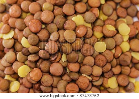 Lentils For Background Or Texture