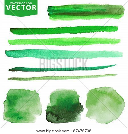 Watercolor stains,brushes set.Green