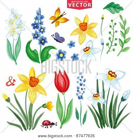 Watercolor Spring flowers set