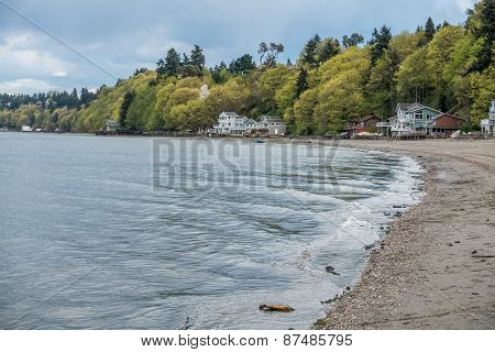 Dash Point Shoreline 1