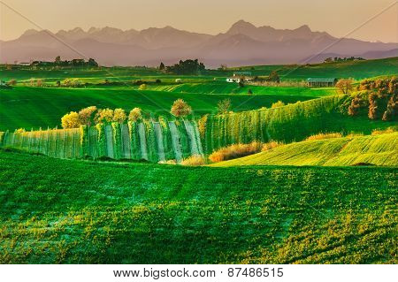Tuscany, Spring Rural Landscape. Countryside Farmland And Mountain On Background.