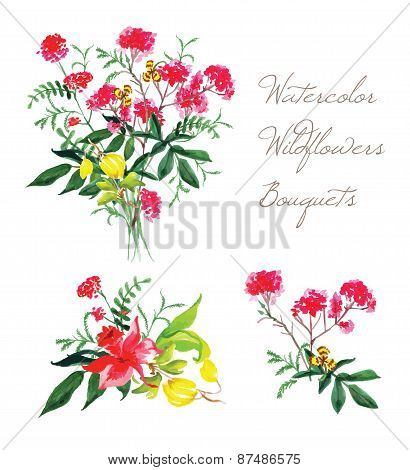 Watercolor Spring Wildflowers Vector Design Set