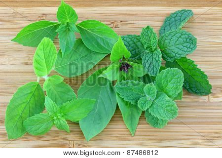 Different types of Basil and Mint leaves on a wooden background (There are Thai sweet basil, Hairy Lemon Basil, Holy basil, Spearmint, Asian Mint, Kitchen Mint)