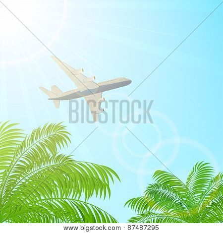 Plane Flying Above The Palms