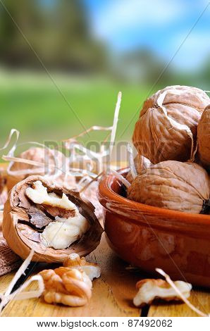 Group Of Walnuts On A Table In The Field Vertical Composition