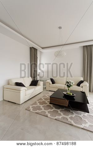 Sitting Room In Luxury Style