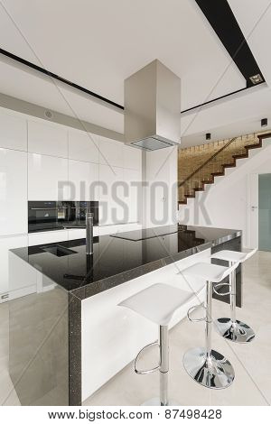 Black And White Stylish Kitchen