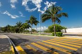 foto of pedestrian crossing  - Pedestrian crossing on tropical street road - JPG