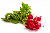 foto of radish  - Bunch of fresh red radishes with green tops isolated on white background