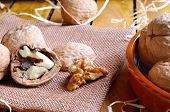 pic of shells  - Group of healthy walnuts in shell and shelled exposed on a wooden table - JPG