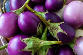 image of south east asia  - Small purple eggplant is the one of the vegetable which easy to find in South East Asia - JPG
