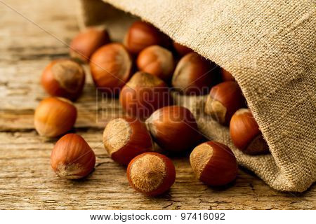 Hazelnuts Scattered Out Of The Bag On Old Wooden Background. Healthy Vegetarian Food