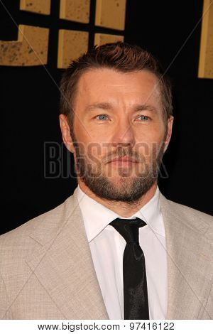 LOS ANGELES - JUL 30:  Joel Edgerton at the