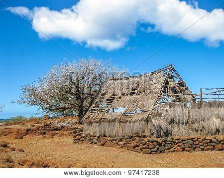 Abandoned Hut