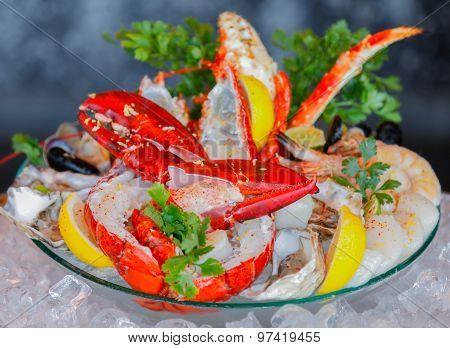 Seafood Set .mediterranean.