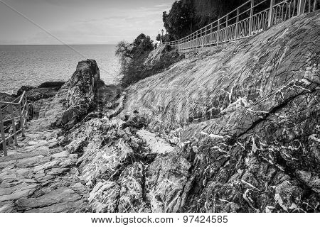 Wide Angle Road With Rocks, Black And White Landscape.