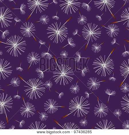 Beautiful Dark Blue Seamless Pattern With Dandelion Fluff