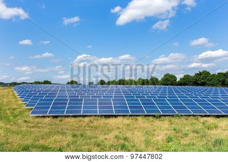 Field With Lots Of Solar Collectors
