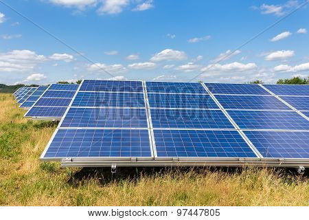 Field With Rows Of Blue Solar Collectors In Grass