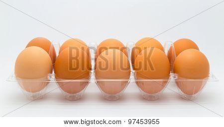 Cardboard chicken egg box on white background