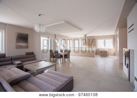 Commodious Room With Suede Sofa