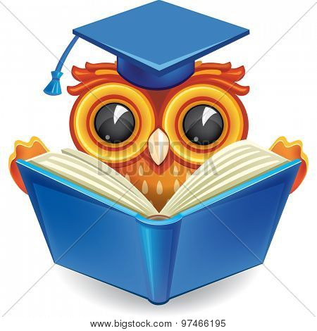 Wise owl in graduation cap with an open book