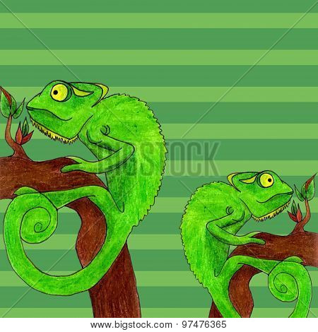 Chameleon Card Vector Illustration