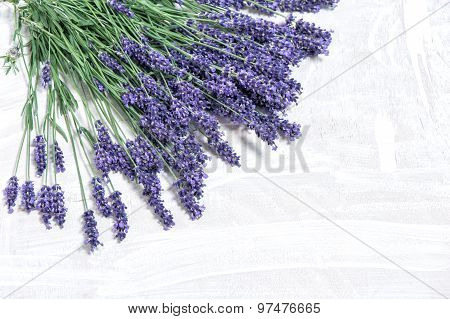 Lavender Flowers Over Rustic Wooden Background