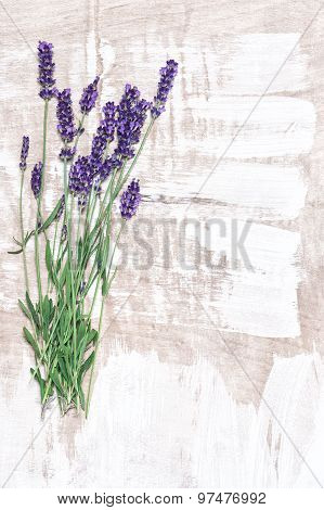 Lavender Flowers Over Rustic Wooden Background. Country Style Decoration