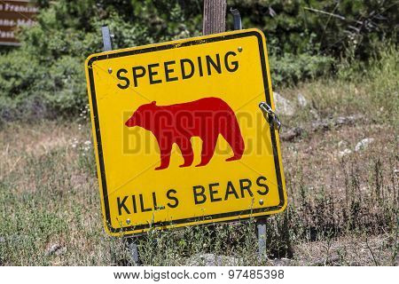 Speeding kills bears warning sign in US National Park.