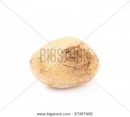Spoiled brown potato isolated