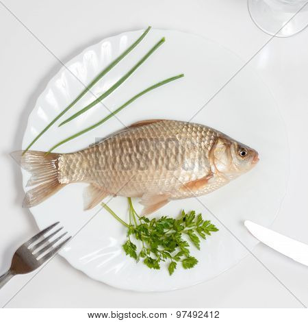 Alive Fish