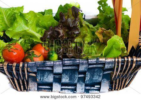 Organic Vegetables In The Wicker Basket