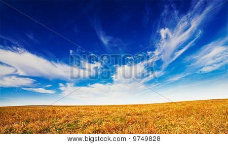 Wonderful Field By Autumn.