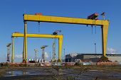 picture of samson  - the cranes called samson and golith at the belfast shipyard - JPG