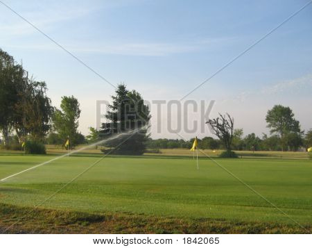 Empty Golf Green
