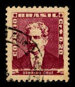 BRAZIL-CIRCA 1954:A stamp printed in BRAZIL shows image of Oswaldo Goncalves Cruz, better known as O