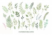 Hand Drawn Watercolor Illustrations. Botanical Clipart ( Laurels, Frames, Leaves, Flowers, Swirls, H poster