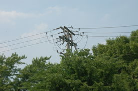 stock photo of power lines  - Series of power lines looming over trees along I - JPG