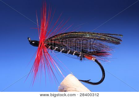 Fly For Salmon
