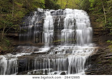 Pearson's Falls in Tryon, NC