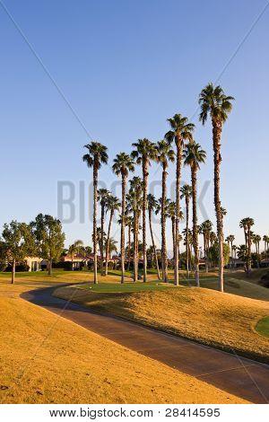 Golf Cart Tee and Path