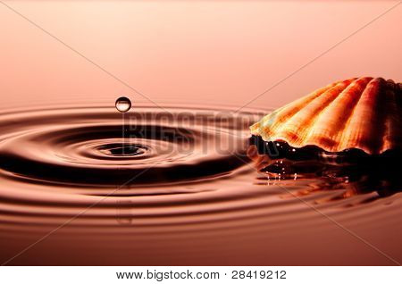 Water Drop with Shell