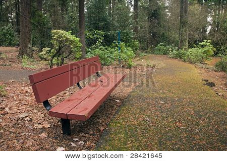 A Bench And Trail In A Park, Portland Or.